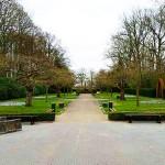Prunuslaan voor het Beatrixpaviljoen